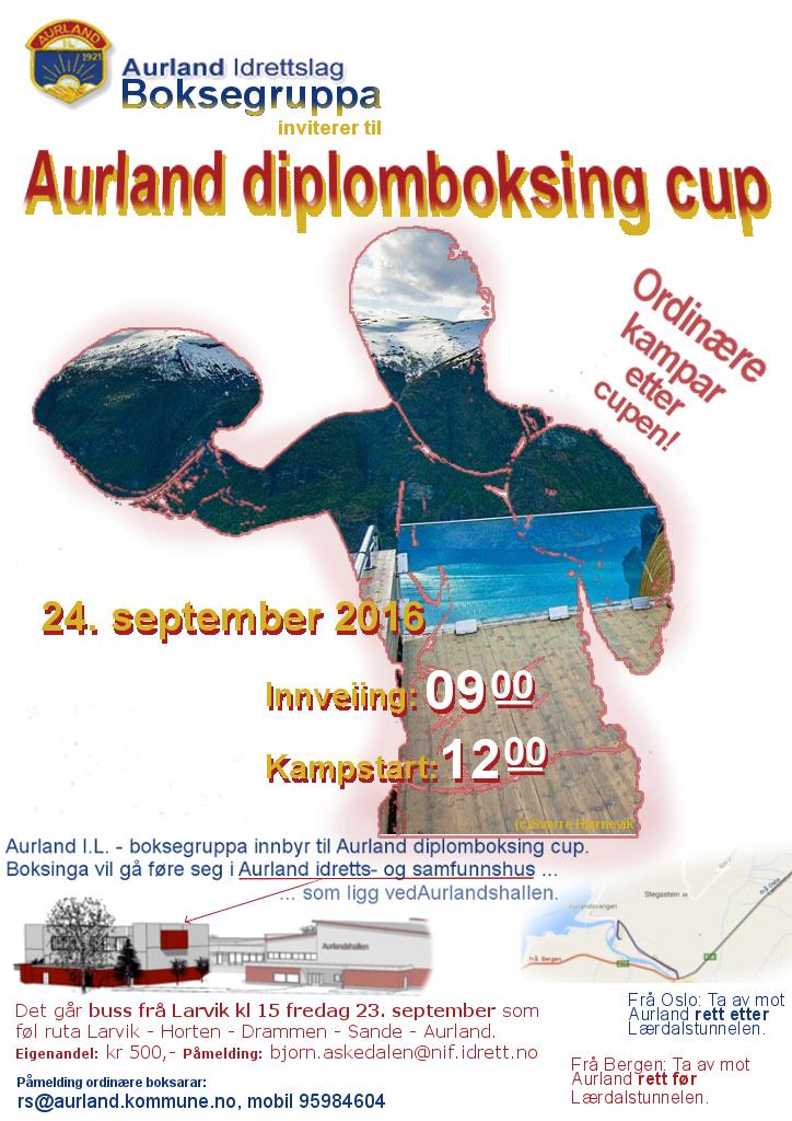 aurlandBKcup24092016UF